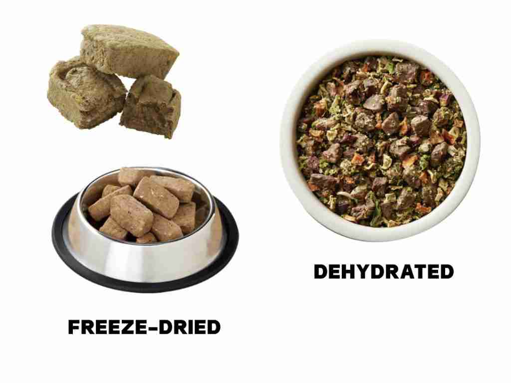 Freeze Dried vs Dehydrated Dog Food For Backpacking And Camping