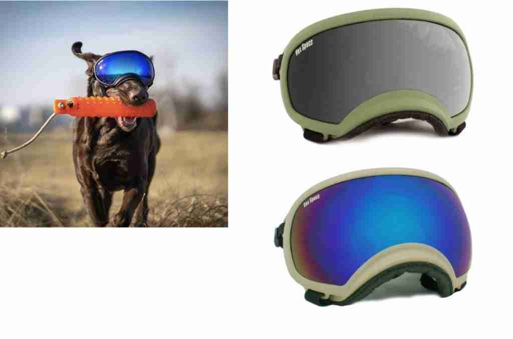 Rex Specs Dog Goggles For Backpacking