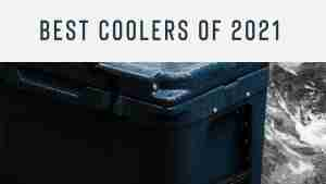Best Coolers of 2021